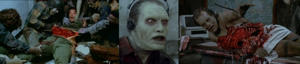 Day-of-the-Dead_Banner